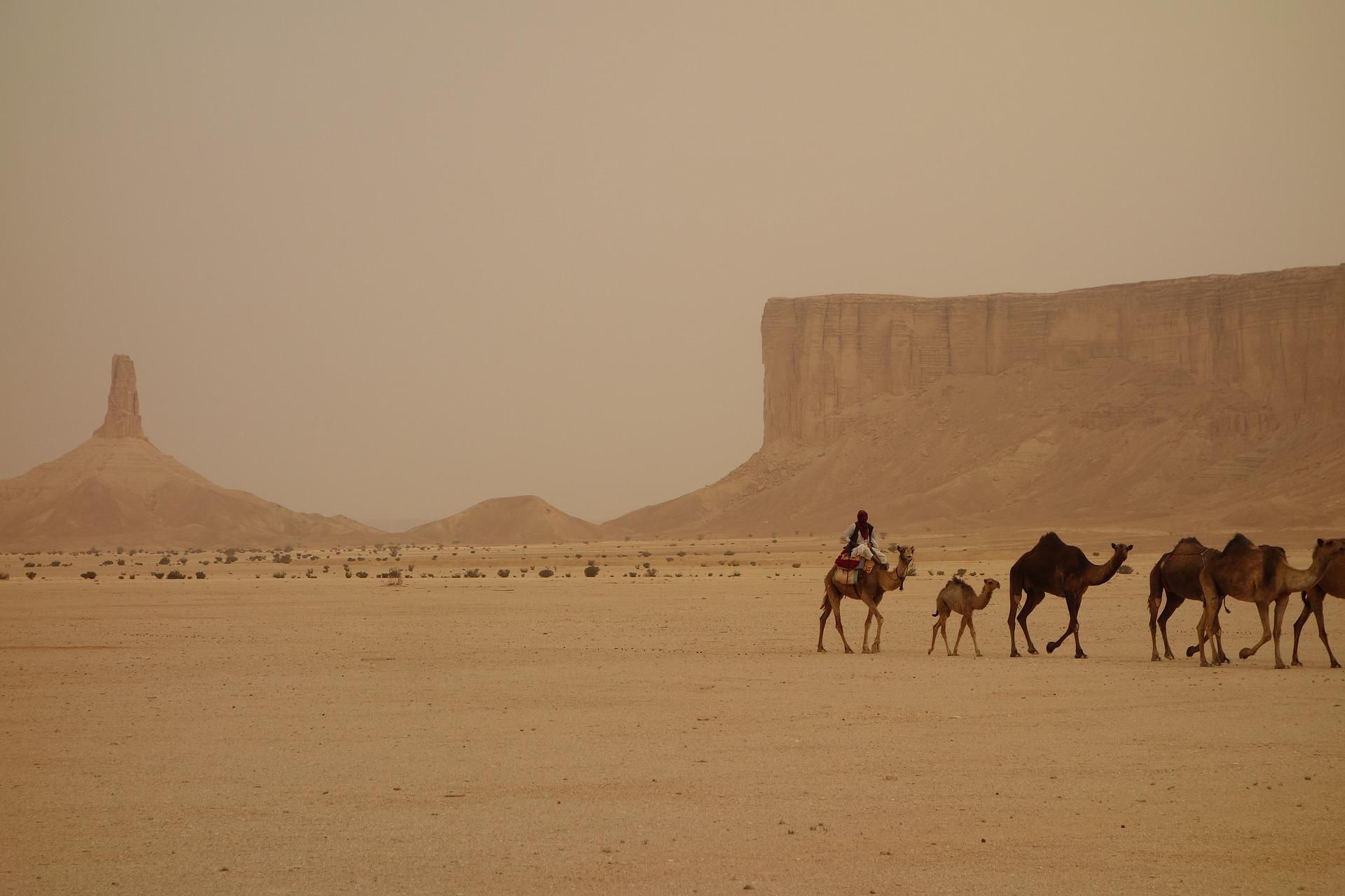 """l""""hospitalité arabe"""