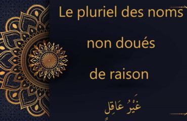 Le pluriel des noms non doués de raison - غَيْرُ عَاقِلٍ - cours d'arabe gratuit