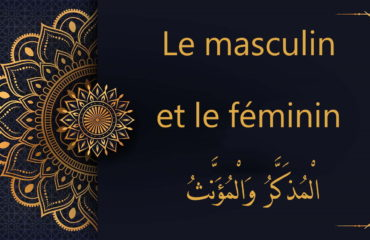 le masculin et féminin en arabe - cours d'arabe gratuit