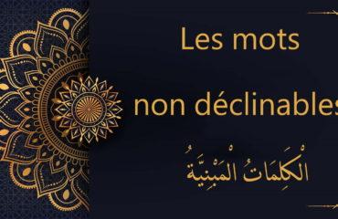Les mots non déclinables - cours d'arabe gratuit